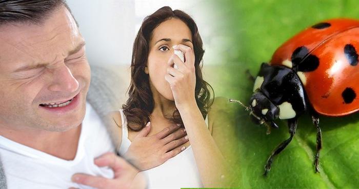 इन 5 कारणों से हो सकता है अस्थमा अटैक, इस तरह करें बचाव