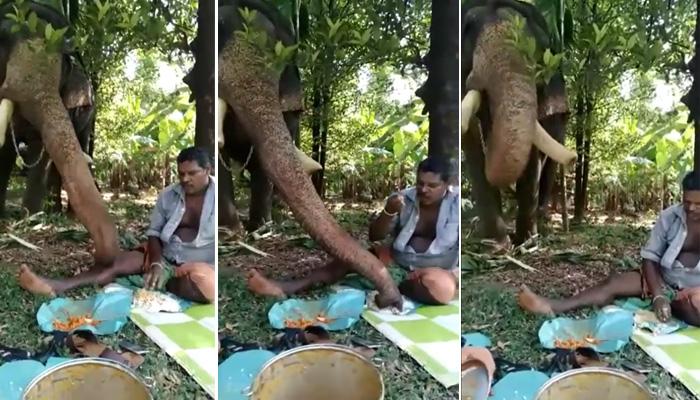 Photo of हाथी और इंसान ने एक ही थाली में खाया खाना, लोग बोले दोस्ती हो तो ऐसी, देखे Video